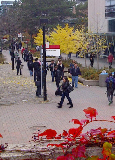 image of campus walk on the Keele campus