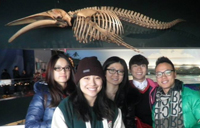 York International excursion to aquarium