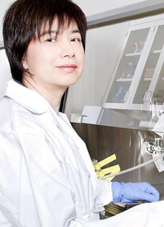 York biology Professor Chun Peng working in her laboratory