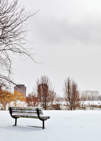 A bench overlooking Stong Pond