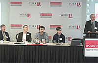 SEI Panel