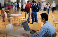 Student studying at Schulich