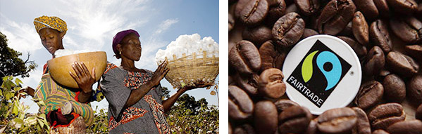 Fair Trade images, showing workers picking coffee beans, and coffee beans with a Fair Trade logo