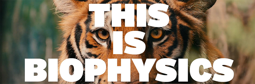 This is Biophysics
