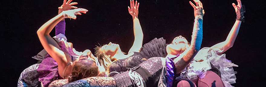 Featured image for the York Dances story
