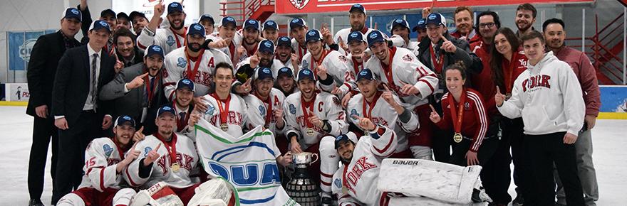 Lions hockey champions