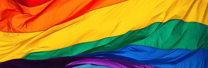 The pride flag