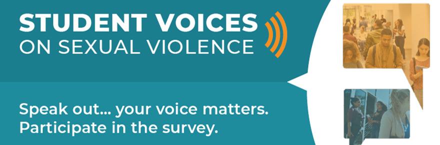Student Voices Sexual Violence survey