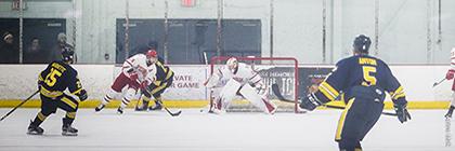 Men's Lions hockey
