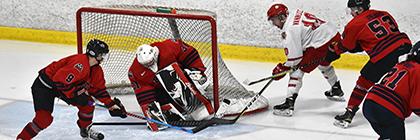 lions men's hockey York University