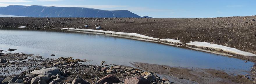 Cool Arctic lake, Cape Herschel (image: Katie Griffiths)