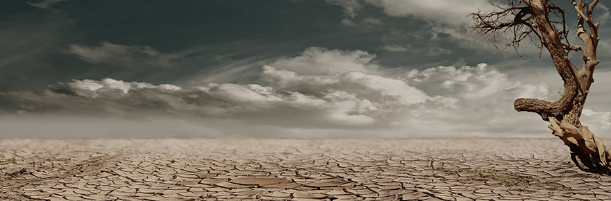 a dry arid landscape due to global warming