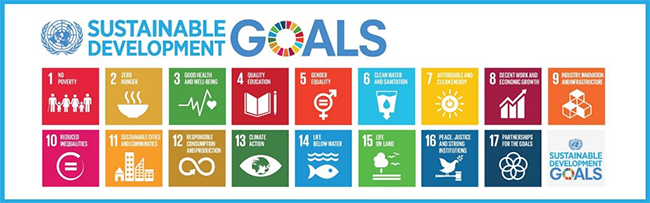 Faculty members can co-create community of practice on UN SDGs