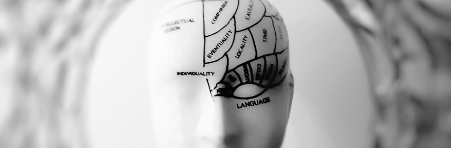 Graphic shows a brain mapped out, including language centre