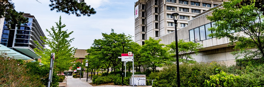 The Campus Walk at York University's Keele location