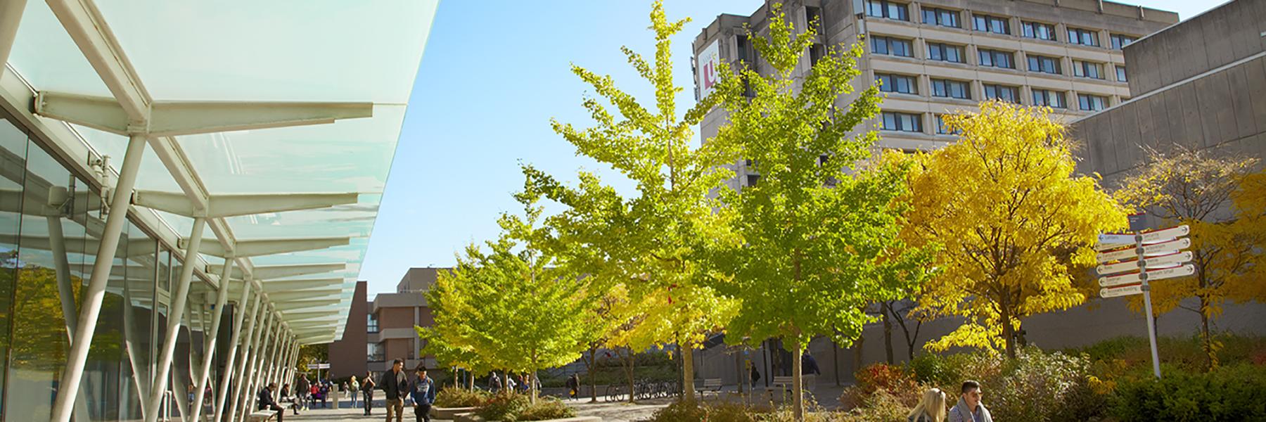 Campus Walk with the Lassonde School of Engineering building