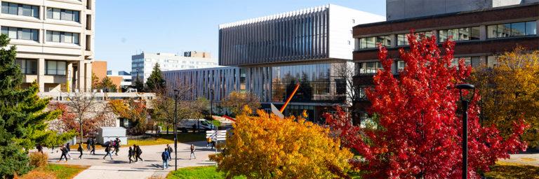 York University's Teaching Commons is always evolving