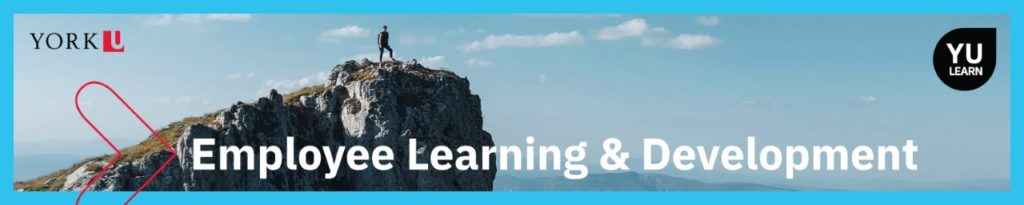 Featured image. Shows a man standing on a mountain top with the words Employee Learning & Development.
