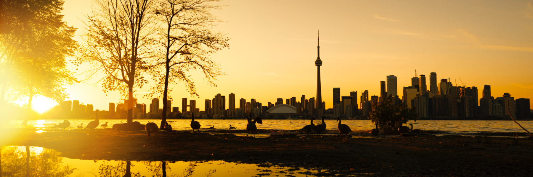 Scenic view of Toronto skyline at dawn